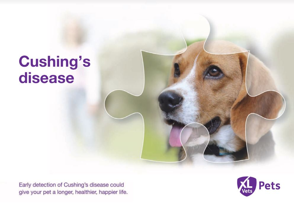 Cushing's Disease Booklet